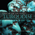 Look inside Turquoise: Jewel of the Southwest.