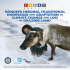 Reindeer herding, traditional... - AC Archive Home
